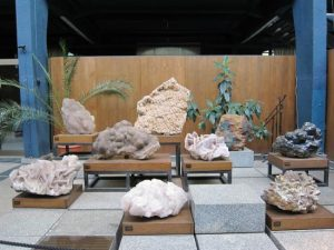 museum musea sofia