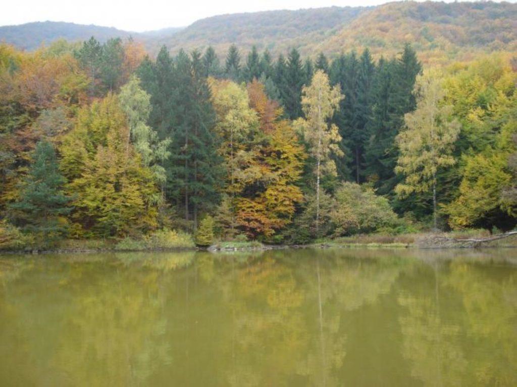 Boyana meer (ook wel Lake Bojana)